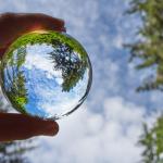 Boas práticas ambientais são prioridade para a Atlantic
